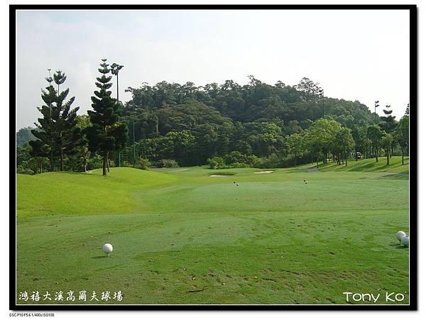 大溪高爾夫俱樂部-西區(畫眉區) 第8洞  PAR3   105碼  難度-6.JPG