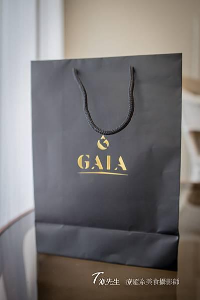 GAIA_1.jpg