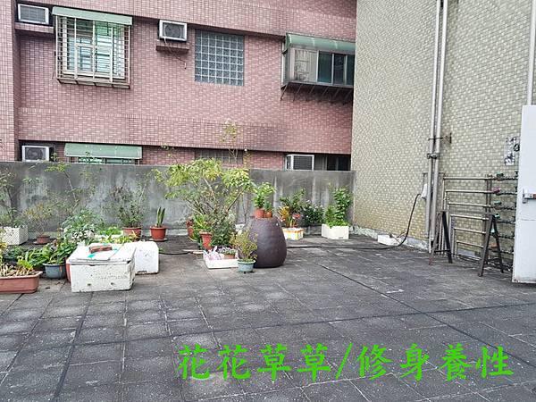 正港捷運宅2.jpg