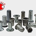 BLIND RIVET NUT SERIES-4-topscrew.jpg