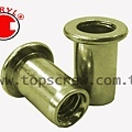 BLIND RIVET NUT-BAI SERIES-topscrew.jpg
