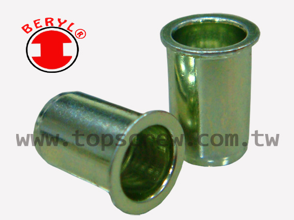 BLIND RIVET NUT-SEM_SAM_SAI SERIES-topscrew.jpg
