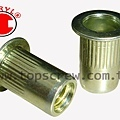 BLIND RIVET NUT-TSBS-STEEL-topscrew.jpg