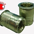 BLIND RIVET NUT-TSSS SERIES-topscrew.jpg