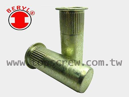 BLIND RIVET NUT-TSBS-C SERIES-topscrew.jpg