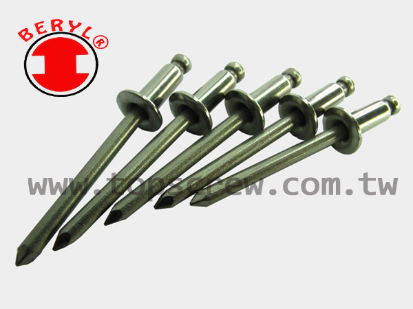 BLIND RIVET SERIES - S-S BLIND RIVET-topscrew.jpg