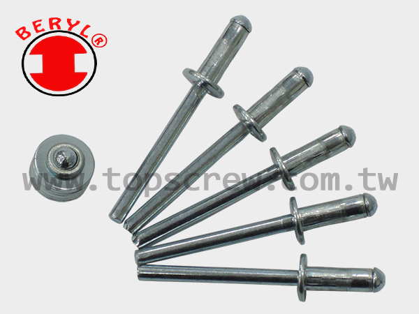 HIGH SHEAR STRENGTH BLIND RIVET-2-topscrew.jpg