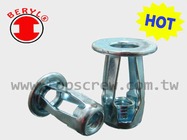 BLIND JACK NUT SERIES-STEEL-topscrew-HOT.jpg