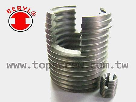 SELF TAPPING - SLOTTED SERIES-topscrew.jpg