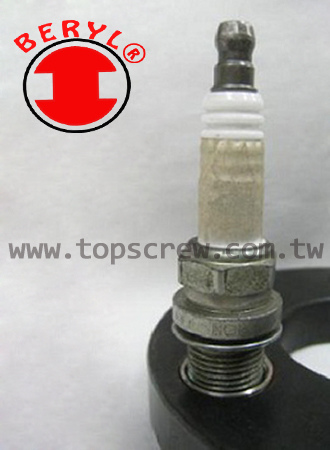 SELF TAPPING THREADED INSERT SAMPLE-topscrew.jpg