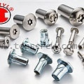 SECURITY FASTENER SERIES-1-topscrew.jpg