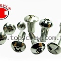 SECURITY FASTENER SERIES-topscrew.jpg