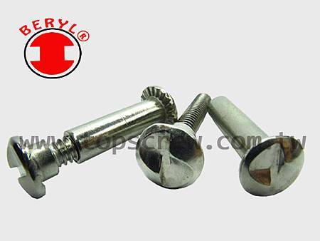 ONE WAY SERIES-1-topscrew.jpg