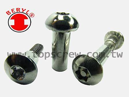 SIX LOBE SERIES-topscrew.jpg