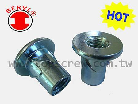 E SELF DRIVING NUT SERIES-topscrew-HOT.jpg