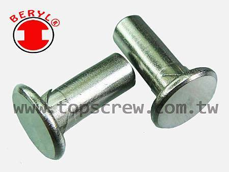 E SELF DRIVING NUT-2-topscrew.jpg