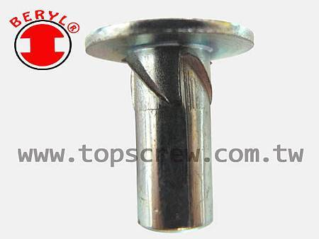 E SELF DRIVING NUT-11-topscrew.jpg