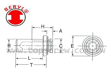 TSC8-DRAWING-topscrew.jpg