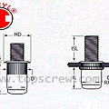 BOLT RIVET NUT DRAWING-topscrew.jpg