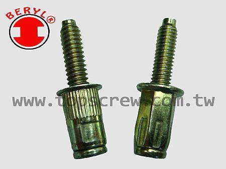 BOLT RIVET NUT-3-topscrew.jpg