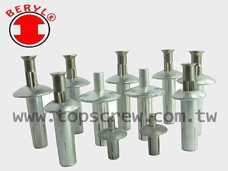 SPEED PIN RIVETS SERIES-topscrew.jpg