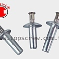 SPEED PIN RIVET-3-topscrew.jpg