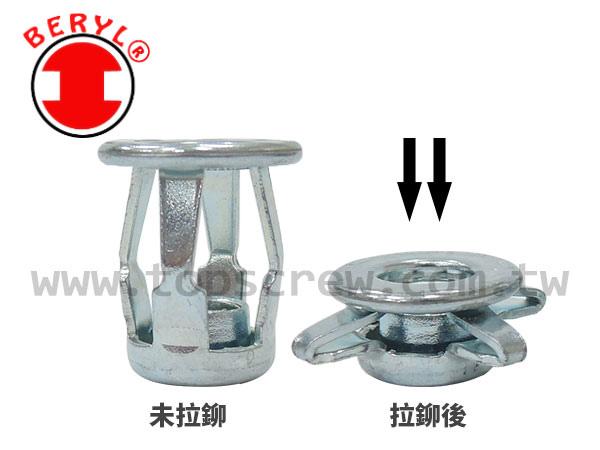 BLIND JACK NUT - STEEL - topscrew cn