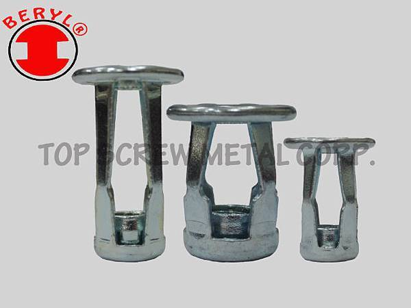 BLIND JACK NUT-STEEL-topscrew