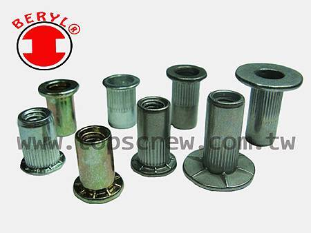 SPECIAL BLIND RIVET NUT SERIES-topscrew.jpg