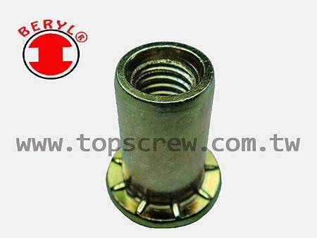 SPECIAL BLIND RIVET NUT SERIES-2-topscrew.jpg