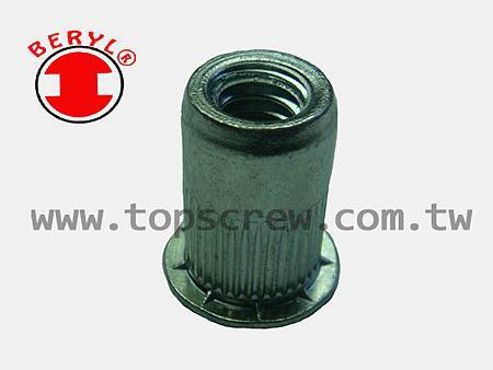 SPECIAL BLIND RIVET NUT SERIES-4-topscrew.jpg