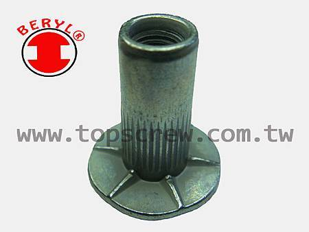 SPECIAL BLIND RIVET NUT SERIES-6-topscrew.jpg