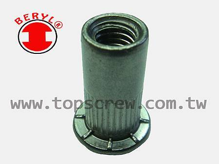 SPECIAL BLIND RIVET NUT SERIES-8-topscrew.jpg