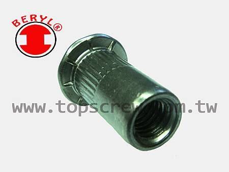 SPECIAL BLIND RIVET NUT SERIES-10-topscrew.jpg