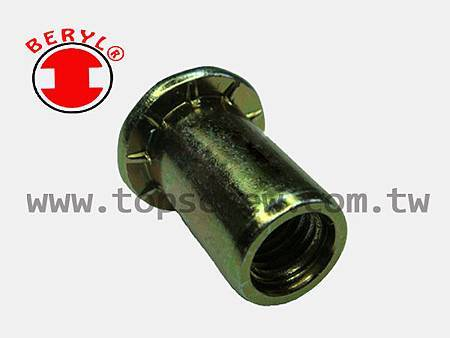 SPECIAL BLIND RIVET NUT SERIES-11-topscrew.jpg