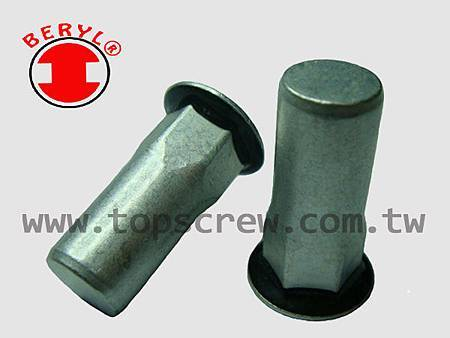 SEAL RIVET NUT SERIES-topscrew.jpg