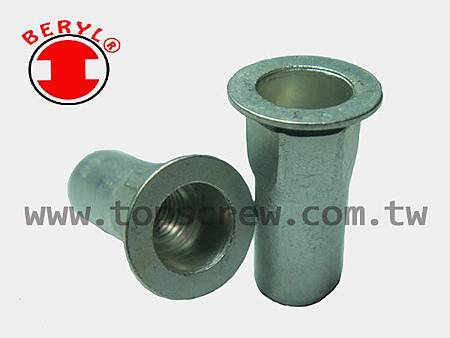 SEAL RIVET NUT -1-topscrew.jpg