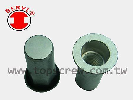 SEAL RIVET NUT -2-topscrew.jpg