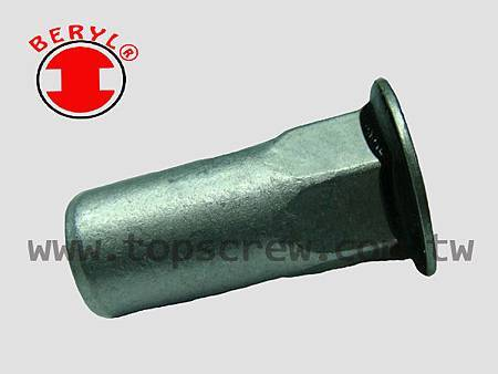 SEAL RIVET NUT -4-topscrew.jpg