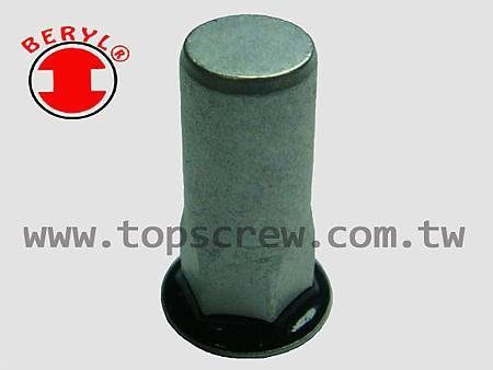 SEAL RIVET NUT -5-topscrew.jpg
