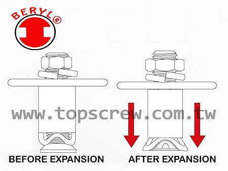 EXPANSION ANCHOR-DRAWING-1-topscrew.jpg