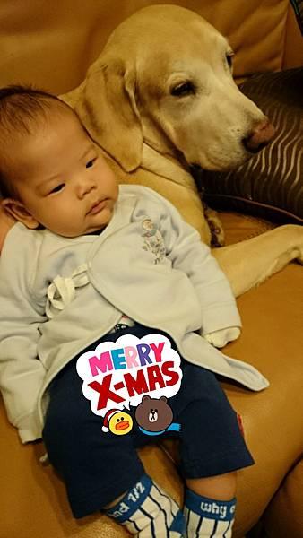 2014-12-24-22-46-18_deco.jpg