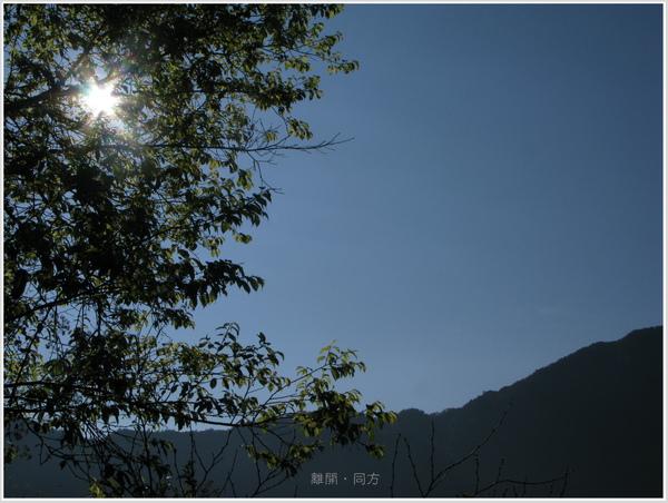 IMG_6242-1.jpg