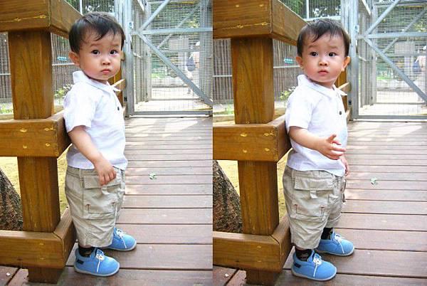 930717新竹動物園