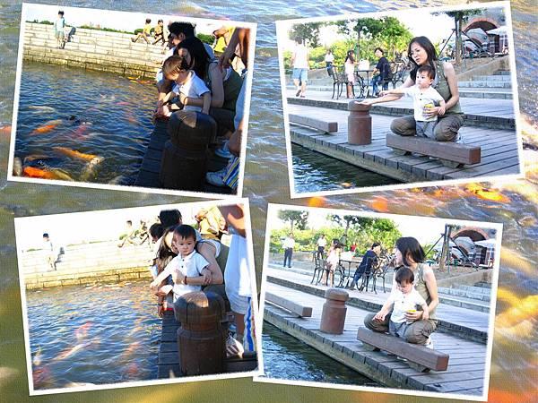 930805羅東運動公園-餵魚篇