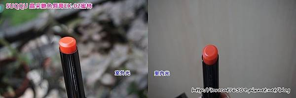 SUQQU 晶采艷色唇膏EX-02蜜柿-顏色近拍.jpg