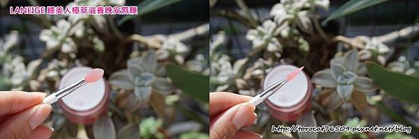 蘭芝LANEIGE 睡美人極萃滋養晚安唇膜-產品設計2.jpg