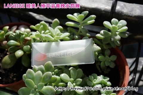蘭芝LANEIGE 睡美人極萃滋養晚安唇膜-產品設計3.jpg