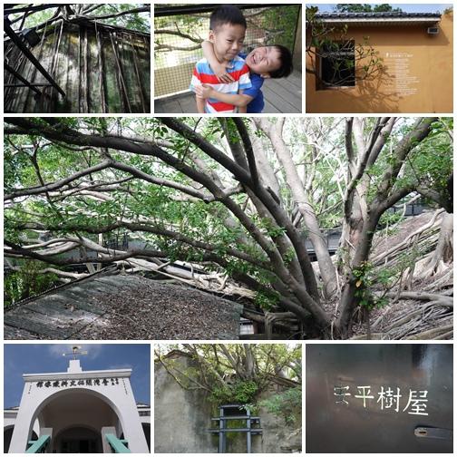 台南。安平樹屋