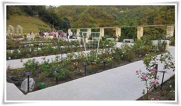 玫瑰園2.jpg